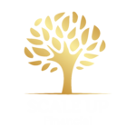 Scale Up Financial